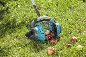 Виды приспособлений для сбора яблок с дерева и как сделать своими руками