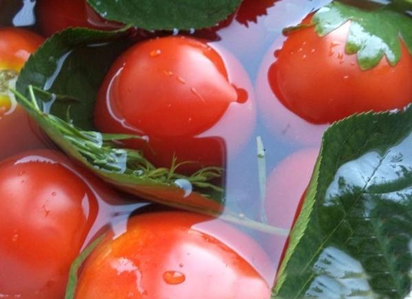 Как приготовить малосольные помидоры в рассоле