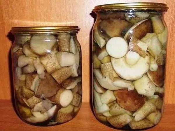 Рецепты вкусных для трубчатых грибов на зиму