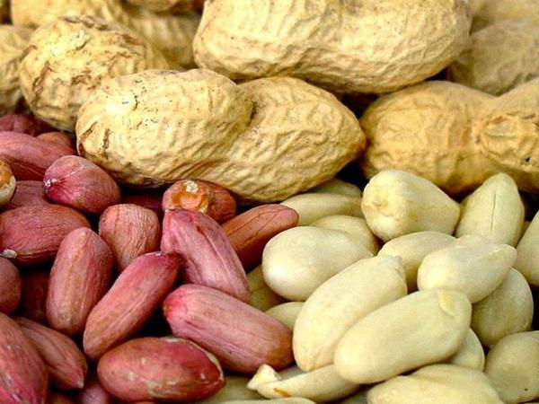 полив арахиса