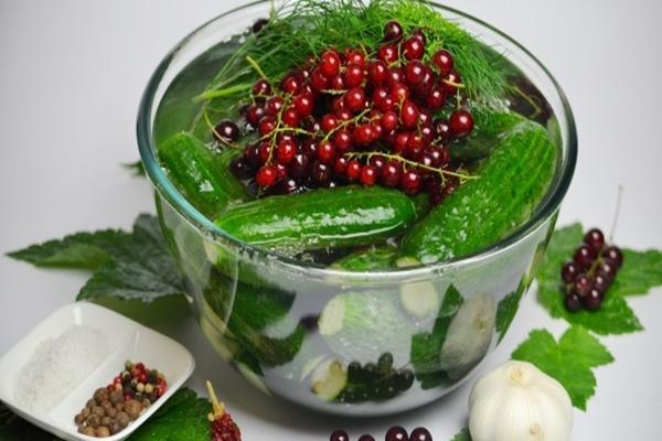 С листьями и плодами красной смородины