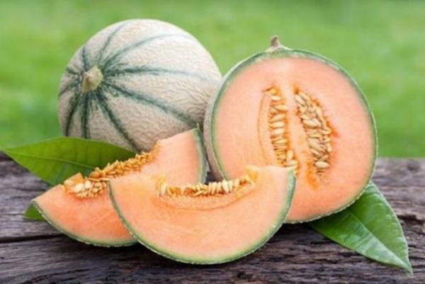 Дыня оранжевая внутри