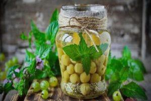 10 лучших рецептов приготовления компота Мохито из крыжовника на зиму