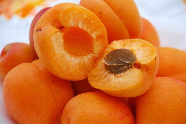 абрикосы свежие