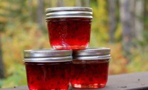 20 простых рецептов пошагового приготовления джема из красной смородины на зиму