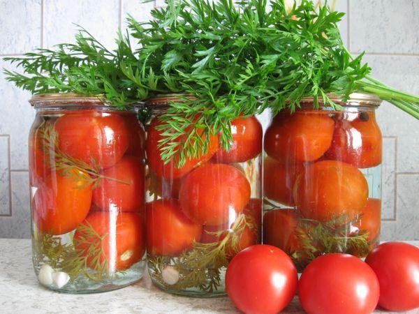 засол томатов