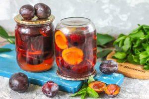 13 лучших рецептов приготовления сливы в сиропе на зиму