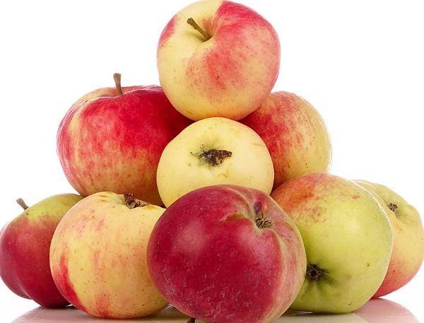 килограмм яблок