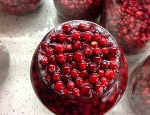 8 лучших рецептов приготовления брусники в сиропе на зиму без варки