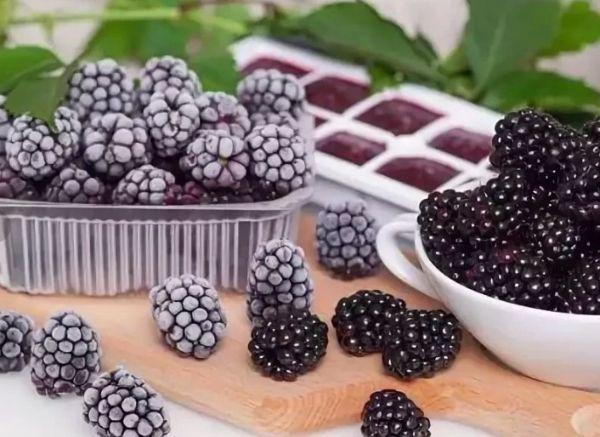 ягоды для заморозки