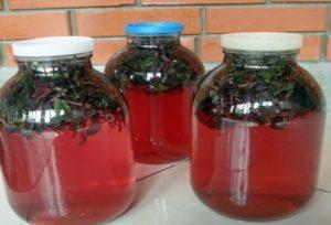 ТОП 8 рецептов приготовления компота из базилика на зиму