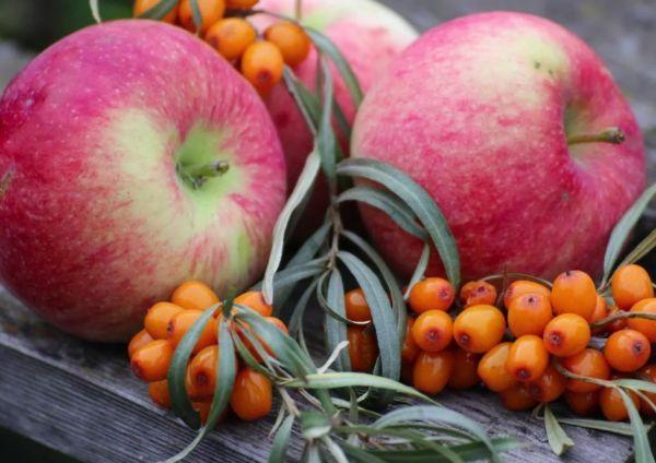 облепиха и яблоки