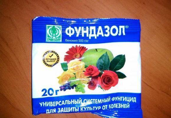 препарат Фундазол