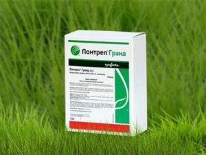 Состав и инструкция по применению гербицида Лонтрел, дозировка и аналоги