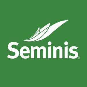 Рейтинг, описание и отзывы о производителе семян агрофирме Seminis
