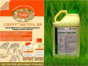 Инструкция и способ применения гербицида Спрут Экстра, норма расхода