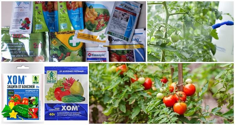 препараты для томатов