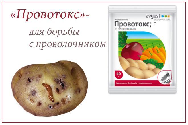 «Провотокс»; препарат