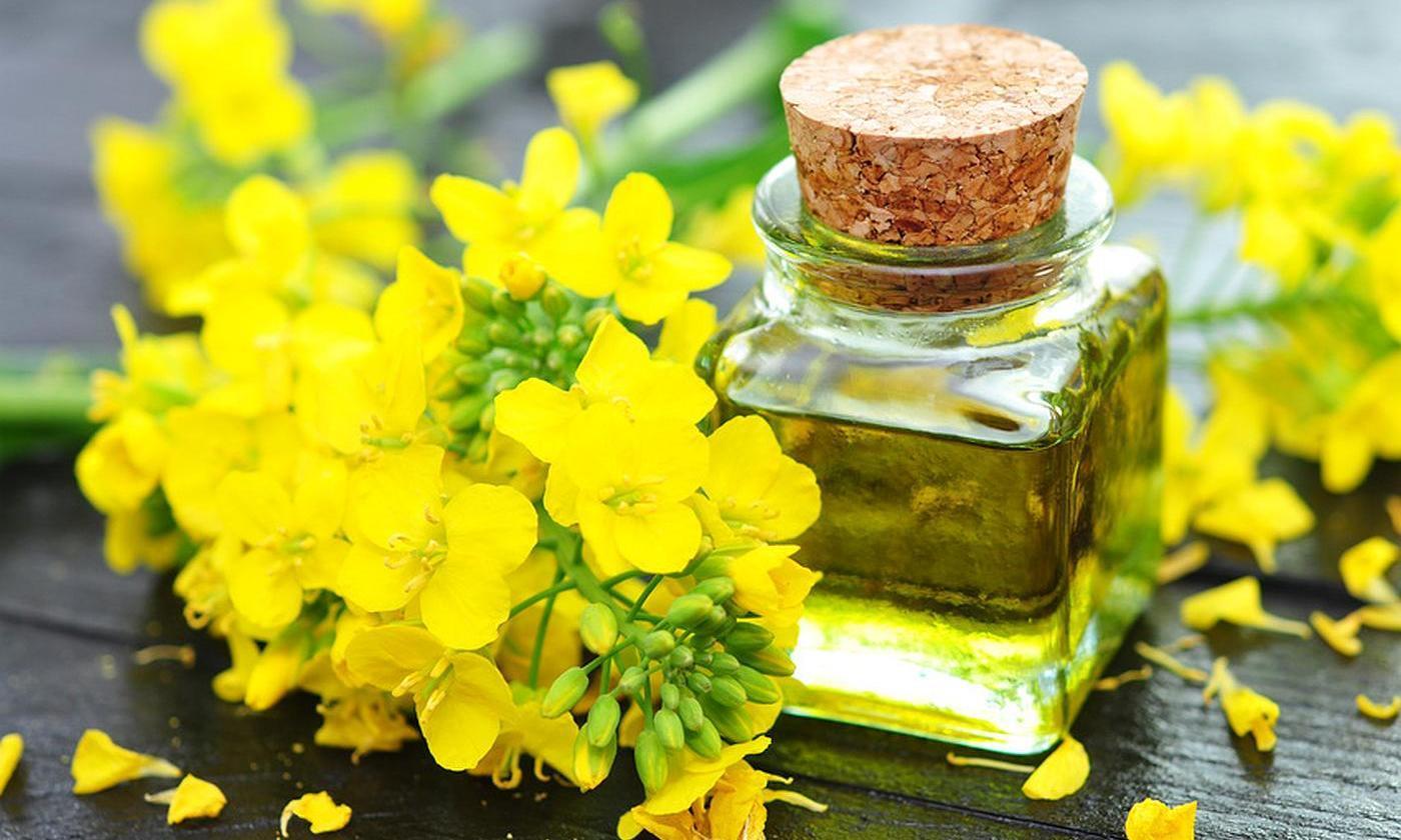 Рапсовое масло и мыло