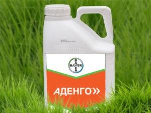 Состав и инструкция по применению гербицида Аденго, нормы расхода и аналоги