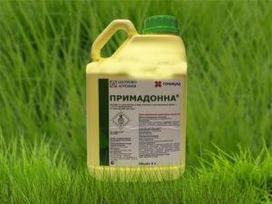 Состав и инструкция по применению гербицида Примадонна, нормы расхода