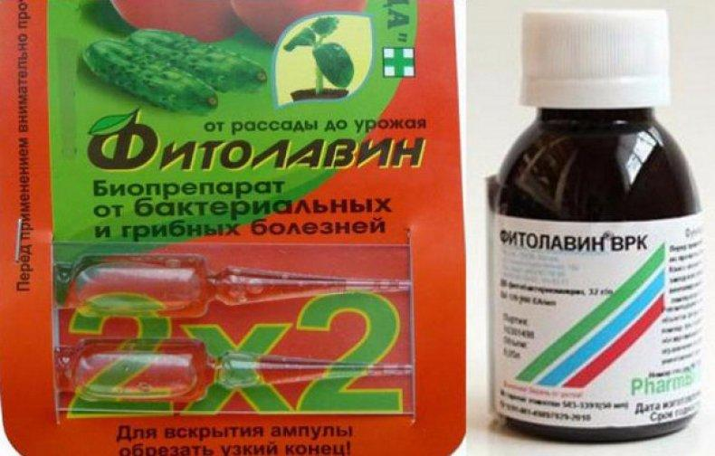 фунгицид фитолавин