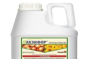 Инструкция по применению и состав гербицида Акзифор, дозировка и аналоги