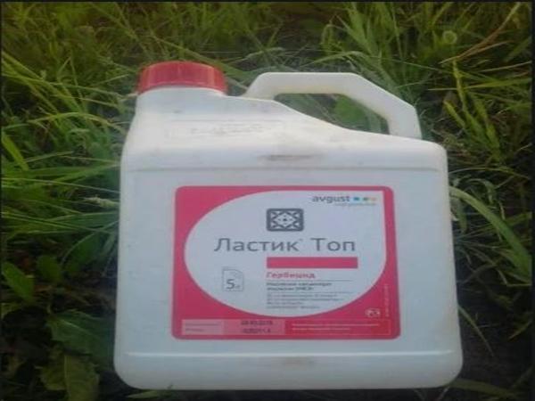 ластик топ гербицид