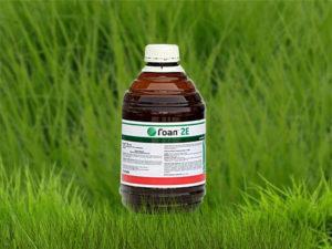Инструкция по применению и состав гербицида Гоал, дозировка и аналоги