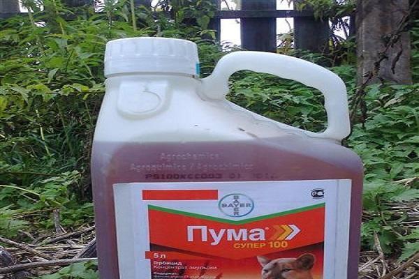 пума супер 100 гербицид