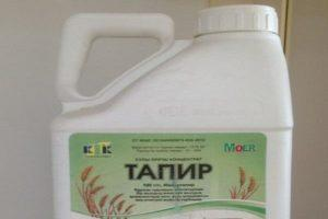 Инструкция по применению и состав гербицида Тапир, дозировка и аналоги