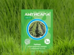 Инструкция по применению и состав гербицида Антисапа, нормы расхода