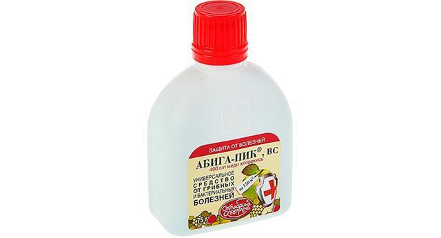«Абига»