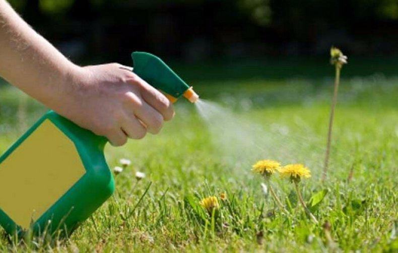дисулам гербицид инструкция