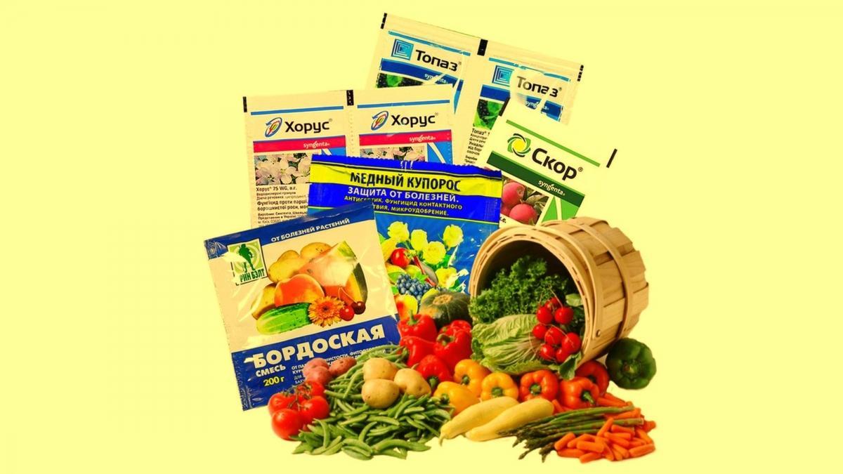фунгициды для комнатных растений список препаратов