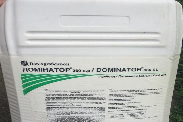 «Доминатор 360»