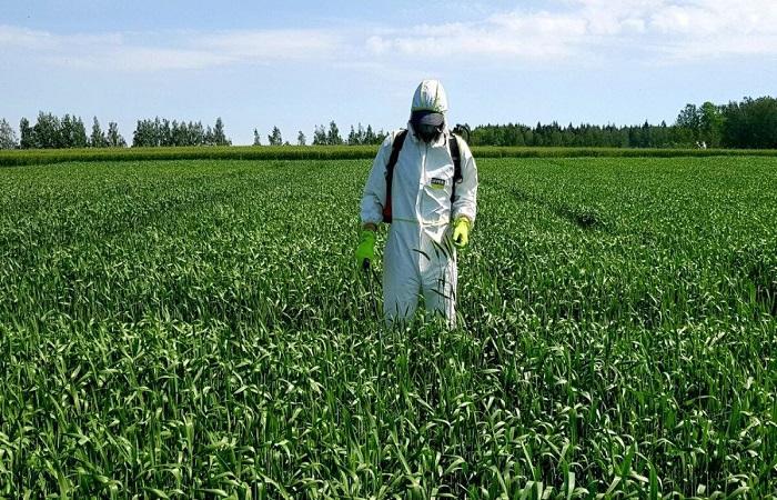защита от токсинов