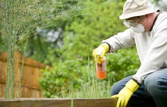 садовник на обработке