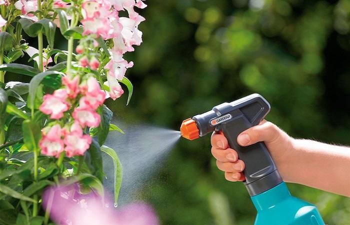 опрыскивать растения
