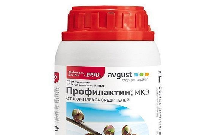 бутылка Профилактина