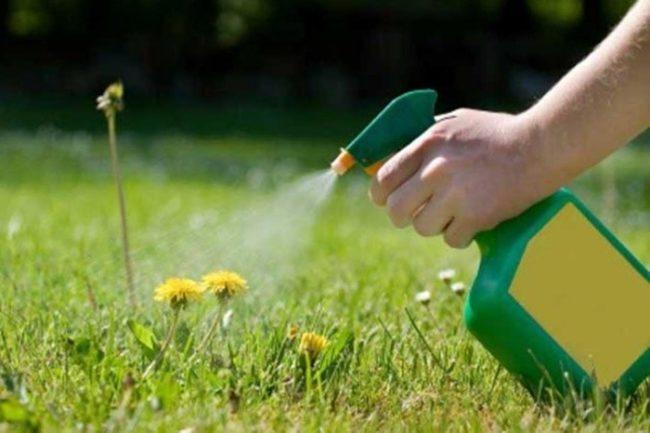 симазин гербицид