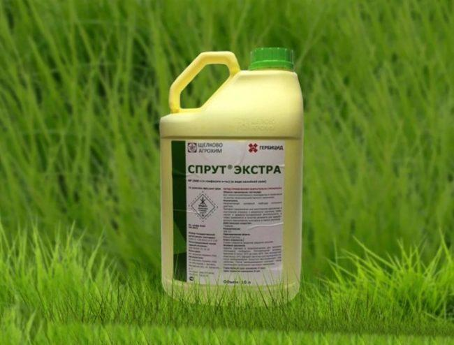 Спрут гербицид